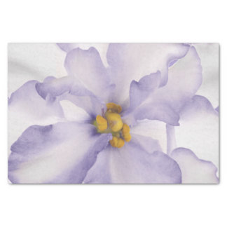 Papel De Seda Orquídea bonita da lavanda