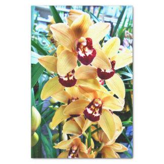 Papel De Seda Orquídeas amarelas do Cymbidium