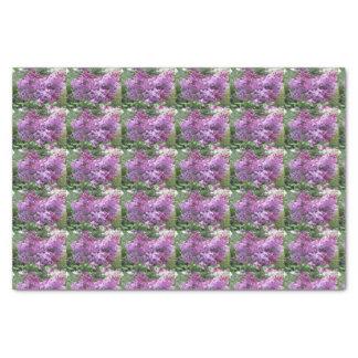 Papel De Seda Os Lilacs bonitos