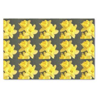 Papel De Seda Parada do Daffodil!