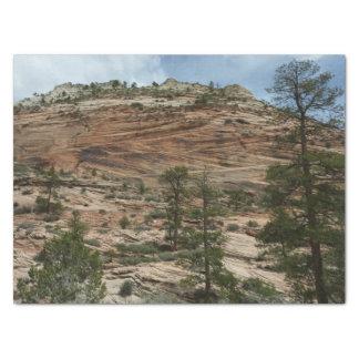 Papel De Seda Paredes gastas da rocha no parque nacional de Zion