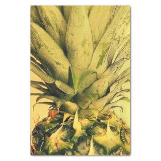 Papel De Seda Retrato tropical