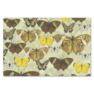 Papel De Seda Teste padrão de borboletas retro do vintage