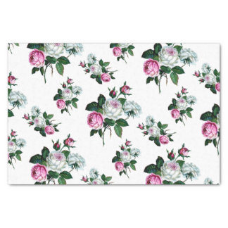 Papel De Seda Teste padrão dos rosas brancos do rosa do chique