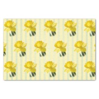 Papel De Seda Teste padrão floral da fotografia do Daffodil