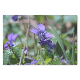 Papel De Seda Violetas selvagens