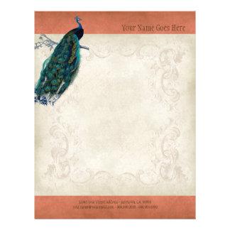 Papel do resumo do cabeçalho do pavão do pergaminh panfletos personalizado