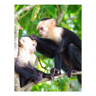 Papel Timbrado Amor do macaco