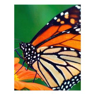 Papel Timbrado Borboleta de monarca bonita