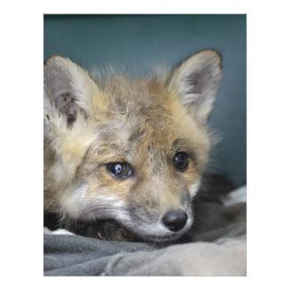 Papel Timbrado Capa de telefone do Fox