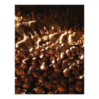 Papel Timbrado Cebolas abundante