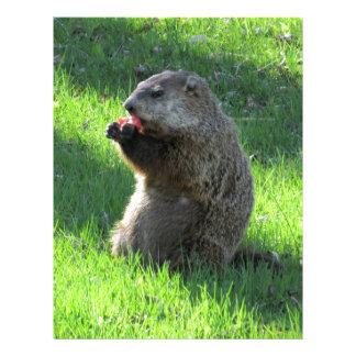 Papel Timbrado Comer de Groundhog