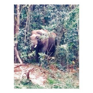 Papel Timbrado Elefante em Tailândia