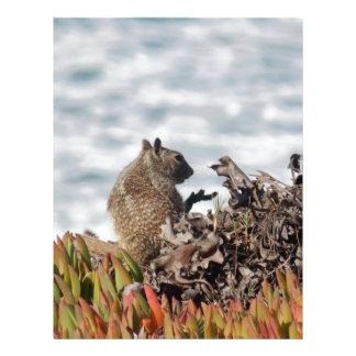Papel Timbrado Esquilo pequeno