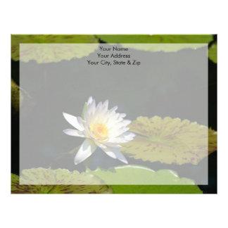 Papel Timbrado Flor de Lotus branco Waterlily