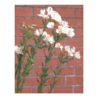 Papel Timbrado Flores no tijolo