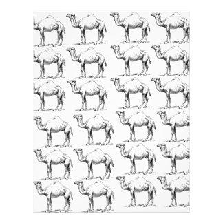 Papel Timbrado grupo do rebanho dos camelos