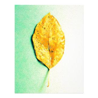 Papel Timbrado Hortelã dourada por JP Choate
