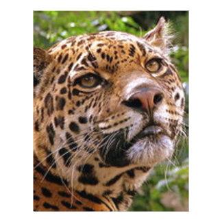 Papel Timbrado Jaguar inquisidor