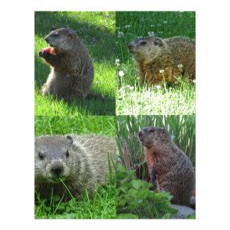 Papel Timbrado Mistura de Groundhog