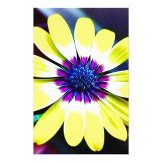 Papelaria A beleza de amarelo e do roxo