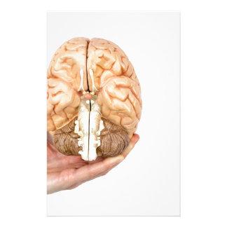 Papelaria A mão guardara o cérebro humano modelo no fundo