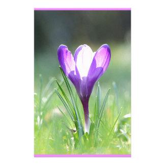 Papelaria Açafrão roxo no primavera 03,3