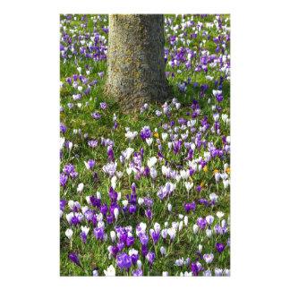 Papelaria Açafrões do campo de flores na grama do primavera