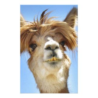 Papelaria Alpaca com cabelo louco