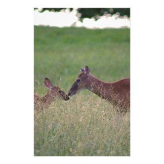 Papelaria Ame-o cervos