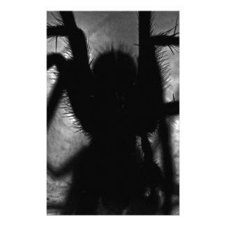 Papelaria Arachnophobia…