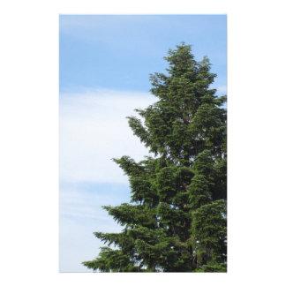 Papelaria Árvore de abeto verde contra um céu claro