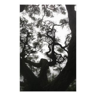 Papelaria Árvore do anjo