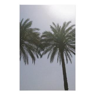 Papelaria Árvores Egipto de Sun