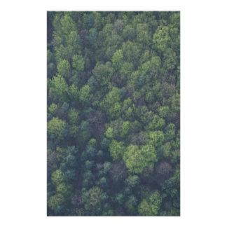 Papelaria Árvores verdes