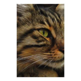 Papelaria Aslan o gato de gato malhado de cabelos compridos