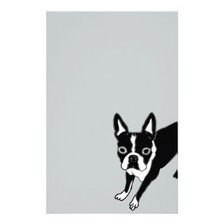 Papelaria Boston Terrier