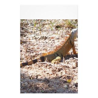 Papelaria Caças alaranjadas da iguana