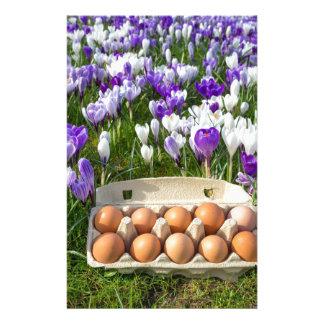 Papelaria Caixa de ovo com os ovos da galinha nos açafrões