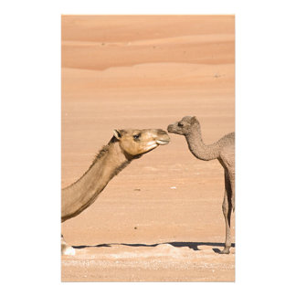 Papelaria Camelo do bebê e sua mãe