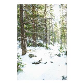 Papelaria Campo de jogos nevado da região selvagem da