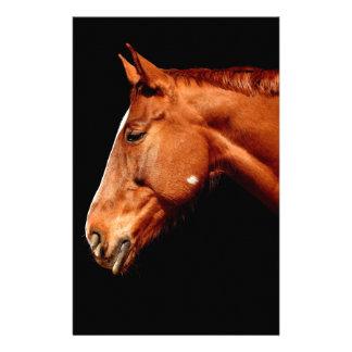 Papelaria cavalo