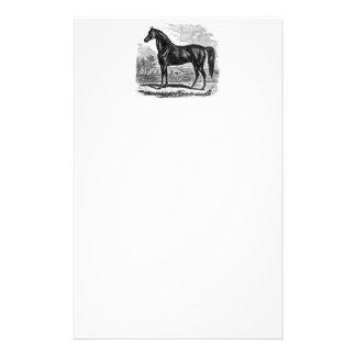 Papelaria Cavalo dos 1800s do vintage - modelo do Equestrian