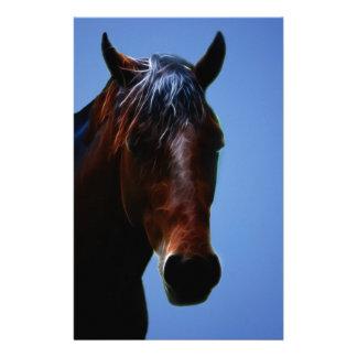Papelaria Cavalo para Lucy