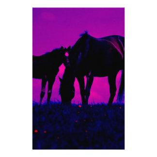 Papelaria Cavalo & potro