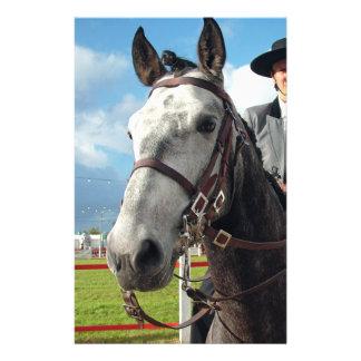 Papelaria Cavalo puro da raça