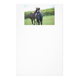 Papelaria Cavalos no amor