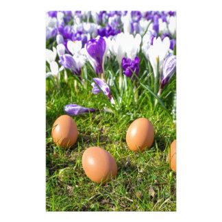 Papelaria Cinco ovos fracos que encontram-se perto dos