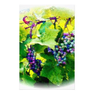 Papelaria conjuntos de uvas 17