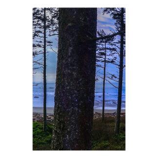 Papelaria Costa de mar da praia do rubi